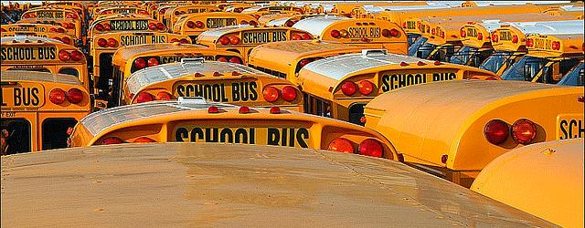 schoolDistrict